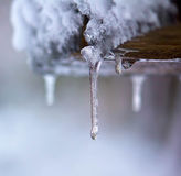 The drop. Dripping and melting in the winter Royalty Free Stock Images