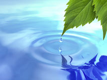 Drop fall from leaf on ripple water. 3d stock illustration