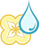 Drop and flower. Vector illustration dripped and flower Stock Images