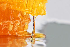 Drop of honey dripping from the honeycomb closeup Stock Images