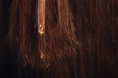 Drop oil restore and recovery on background of damaged hair after sun. Concept hairdresser spa salon.  royalty free stock images
