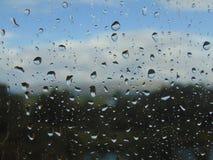 A drop of rain. Royalty Free Stock Photos