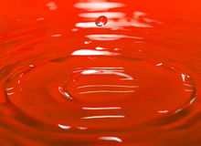The drop in red water Royalty Free Stock Images