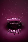 Drop splash royalty free stock images