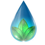 Drop of water with  leaves Royalty Free Stock Photos