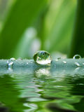 Droplet Royalty Free Stock Photos