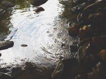 droplets royaltyfria bilder