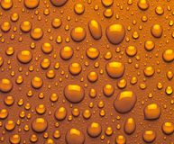 Droplets of amber liquid Stock Photos