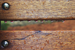 Droplets on Bench Stock Photos