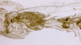 Droplets brown paint in water on a white background. Ink movement underwater stock footage
