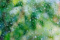 Droplets of rain on a window. Glass on a blurred background and trees with green foliage Royalty Free Stock Image