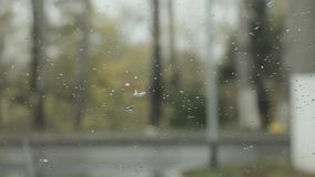 Droplets on a windshield on the day snow with rain. blured background.  stock footage