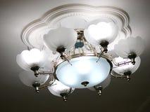 droplight Στοκ εικόνες με δικαίωμα ελεύθερης χρήσης
