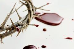 Droppar av blod Arkivbilder