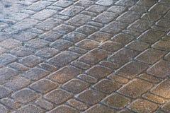 Droppar av hällregn på trottoaren royaltyfri foto