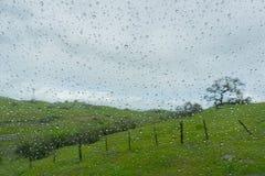Droppar av regn på fönstret; suddiga gröna ängar i bakgrunden; Royaltyfri Fotografi