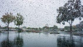 Droppar av regn på vindrutan; träd reflekterade i den våta trottoaren; Royaltyfri Foto