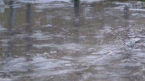 Droppar av regnnedgången till trottoaren som bildar en pöl arkivfilmer