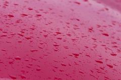 Droppar av vatten på det röda biltaket, naturbakgrund Royaltyfria Foton