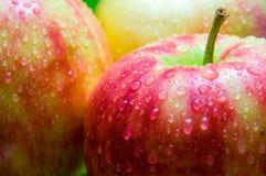 Droppar av vatten på en äpplecloseup på en bakgrund av annan appl Royaltyfria Bilder