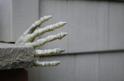 droppar för halloween skelett- assistentvatten Royaltyfria Foton