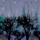 Droppar på exponeringsglaset efter regnet och sikten av skogen på skymning royaltyfri illustrationer