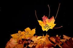 Droppblad Royaltyfria Bilder