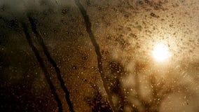 Droppe av vatten på exponeringsglaset royaltyfri foto