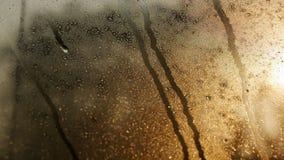 Droppe av vatten på exponeringsglaset royaltyfria bilder