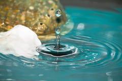 Droppe av vattenfärgstänk med skalet Royaltyfri Bild