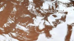 Droppe för regnvatten i lergods stock video