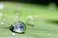 Droppe och jord Royaltyfri Foto