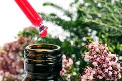 Droppglass med blommaextrakt och en växt av rosmarin Royaltyfria Bilder