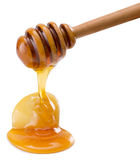 Dropping honey isolated on a white background Royalty Free Stock Photos