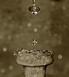 dropptid Arkivbild