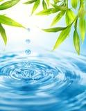 droppvatten Arkivfoton
