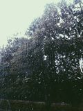 Droppvatten på fönster Arkivfoton