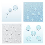 Drops. Four pictures with drops, in light tones Royalty Free Stock Image