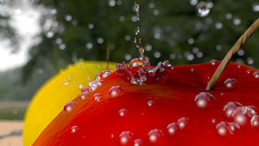 Drops and an apple Stock Images