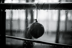 Drops on the balloon and metal handrail, black and white photo. Summer rain, droplets on metal handrail. After party concept stock photos