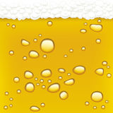 Drops in beer (vector) Stock Image