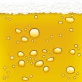 Drops in beer (vector) Stock Image