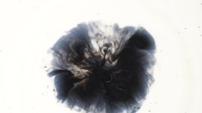 Drops of black liquid inks falling into white substance, monochrome. Top view of dark paint drops making splashes in