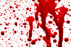Drops of blood Royalty Free Stock Image