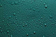 Drops on the green background Stock Photography