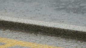 Drops of heavy rain fall on asphalt. Tropical Rainfall. Drops of heavy rain fall on the asphalt. Tropical Rainfall stock video footage
