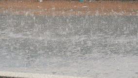 Drops of heavy rain fall on asphalt. Tropical Rainfall. Drops of heavy rain fall on the asphalt. Tropical Rainfall stock footage