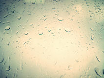 Drops on a light background. Dew. Close-up. royalty free stock image