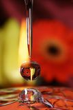 Drops of love. Stock Photography