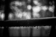 Drops on the metal handrail, bnw photo. Summer rain, droplets on metal handrail royalty free stock photo